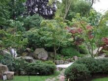 京都庭園11
